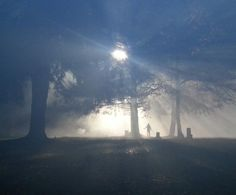 Spooky set pic from Robert's twitter #OUAT