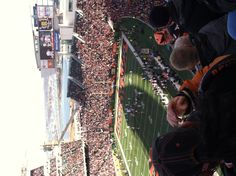 Paul Brown Stadium: Home of the Cincinnati Bengals