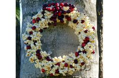 DIY Popcorn Cranberry Wreath for Birds. Supplies Needed: Wire wreath form ( 8 form at craft stores.), Fishing line or stout thread, Long needle with a fairly small eye, Floral… Winter Diy, Winter Christmas, All Things Christmas, Christmas Holidays, Christmas Wreaths, Christmas Decorations, Yule, Kids Crafts, Craft Projects