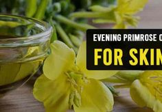 Benefits of Evening Primrose Oil for Skin Home Remedies For Rashes, Acne Remedies, How To Treat Eczema, How To Treat Acne, Evening Primrose Oil Benefits, Seasonal Allergies, Hot Flashes, Oils For Skin, Health And Beauty