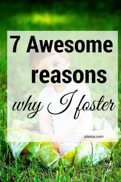 Why I Foster