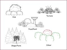 Dominance in the landscape can result from larger size, coarser texture, stronger form, stronger colour or the existence of a focal point.