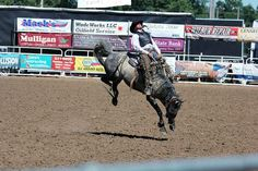 St. Onge Livestock team wins BH Roundup Ranch Rodeo | TSLN.com