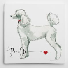 Wexford Home Carol Robinson 'Must Love Poodles' Wrapped Canvas Art