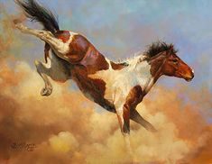 Bucking pinto horse - wild mustang - horse painting by Bonnie Marris - The Terrible Twos Pretty Horses, Beautiful Horses, Wilde Mustangs, Indian Horses, Horse Artwork, Horse Drawings, Horse Pictures, Art Pictures, Equine Art