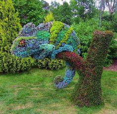 outdoor carribean style gardening.....ha ha