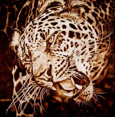 Leopards pyrography   Burned on 12 x 12 inch wood birch ply. Framing not shown