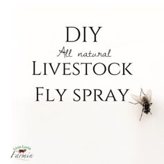 Have you ever read the back of a livestock fly spray bottle?  It's terrifying.  I don't even want it in my barn, let alone on my cows that produce food for my family and I.