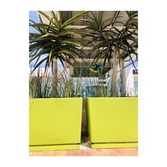 A great example of colour tie-in to the Baywest Mall logo and scheme, with debossed feature on all rectangular angled benches :: Rectangular Angled Bench, Square Planter high, Ellipse Bollard in Lime and Powder Grey Trough Planters, Planter Pots, Square Planters, Higher Design, Concrete Planters, Outdoor Landscaping, Benches, Mall, Innovation