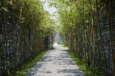 Gallery - Naman Retreat / Vo Trong Nghia Architects - 17
