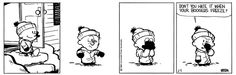 Calvin and Hobbes, February 05, 1988 - Don't you hate it when your boogers freeze?