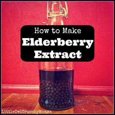 LittleOwlCrunchyMomma: How to Make Elderberry Extract (or How to Make Elderberry Tincture)