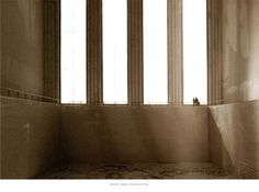 Lost in contemplation | archiact