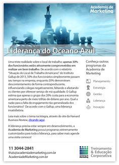 Email Marketing - Liderança do Oceano Azul