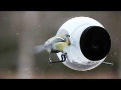 Kiinnitä tämä lintulauta vaikka keittiön ikkunaan ja seuraa lintujen ruokailua lähietäisyydeltä.