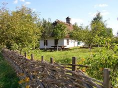 traditional Ukrainian style of weaving a garden fence out of green wood.