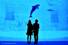 Fumiya×Nonoka | 愛知のカップル | Lovegraph(ラブグラフ)カップルフォトサイト