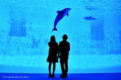 Fumiya×Nonoka   愛知のカップル   Lovegraph(ラブグラフ)カップルフォトサイト