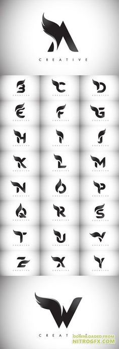 Vector Letter Wings Logos Design with Black Bird Fly Wing Icon