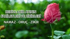Rebiulahir Ayının Faziletleri ve Zikirleri Watermelon, Knowledge, Fruit, Vegetables, Allah, Food, Essen, Vegetable Recipes, Meals
