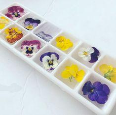 Essbare Blumen im Eiswürfel                                                                                                                                                                                 Mehr