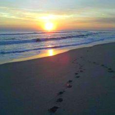 Vero Beach, Florida. Girls week in may on this beach !!!
