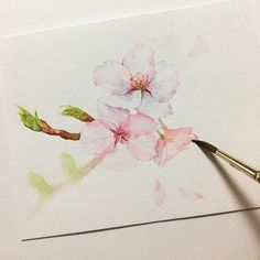 "929 Likes, 38 Comments - Illustrator viichae(원미나) (@viichae) on Instagram: ""그림 그릴시간이 없을때는 그림이 너무 그리고 싶은데 막상 그림을 그리려고 하면 막막.. . . #나도 #벚꽃 #그림 #수채화 #그림스타그램 #일상 #봄 #꽃그림 #식물그림…"""