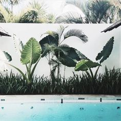 We wouldn't mind a dip here // via @annie_om