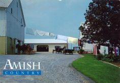 UNITED STATES (Pennsylvania) - Life in Amish Country (7)