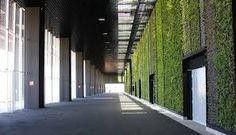 Image result for universal citywalk california green wall