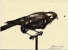 Nathan Oliveira sketch of a bird, Charles Campbell Gallery records, Archives of American Art, Smithsonian Institution. Pretty Pictures, Art Pictures, Animal Drawings, My Drawings, Archives Of American Art, Art Thou, Pin Art, Paintings I Love, Pet Portraits