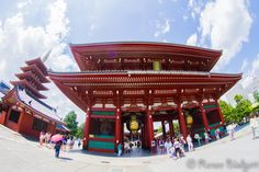 The beautiful Asakusa Shrine