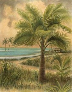 Tropical Palm Tree Art ~ Love this so much!