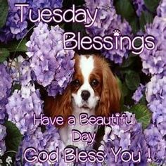 ... MORNING EVERYONE, WISHING YOU A BLESSED AND JOYOUS DAY! GOD BLESS YOU