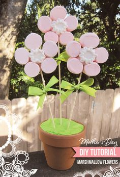Centros de #flores hechos con #nubes de caramelo (#marshmallows) . Ideal para #fiestas de #primera #comunion.  http://www.airedefiesta.com/product/2277/0/0/1/1/Nubes--Marshmallows.htm