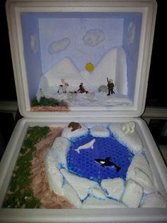 Tundra diorama,  my son did it for his science class.
