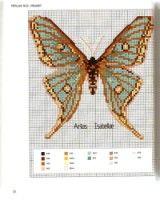 Gallery.ru / Фото #36 - MARABOUT Insects - tatasha