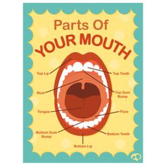 Parts Of Your Mouth Poster | Turtle Speech Communications