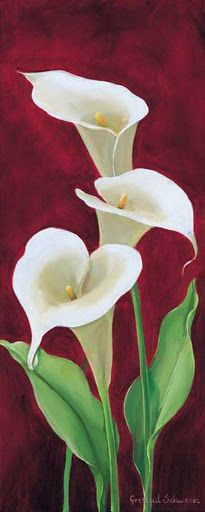 Calla on burgundy III Canvas Art - Gertrud Schweser x Calla Lillies, Calla Lily, Art Floral, Watercolor Flowers, Watercolor Paintings, Lily Painting, Beautiful Paintings, Flower Art, Beautiful Flowers