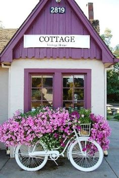 purple cottage with matching petunias
