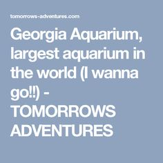 Georgia Aquarium, largest aquarium in the world (I wanna go!!) - TOMORROWS ADVENTURES