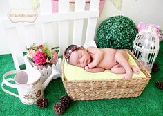 Outdoor theme! Newborn photography