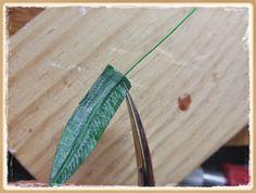 tutorial: Ferns
