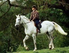 White horses can be a challenge to keep clean. Here's how to keep your white or light colored horse clean and bright. Learn tips to clean your white horse, and keep it from getting yellowish or stained.