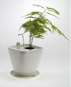 Science Sons Cool Bonsai Park Planters Plants Potted Plant