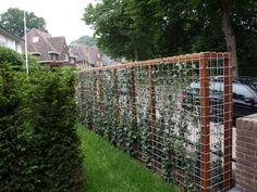 Afbeeldingsresultaat voor tuin met schutting