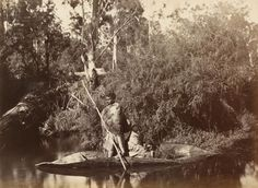 'Aboriginal men in canoe, Coranderrk Aboriginal Station' by Fred Kruger, Aboriginal Man, Aboriginal Culture, Aboriginal People, Indigenous Education, Indigenous Art, Aboriginal Education, Antique Photos, Old Photos, Australian Aboriginal History