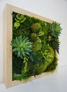 Moss Wall Art, Moss Art, Vertical Garden Wall, Garden Wall Art, Garden Wall Designs, Unique Wall Art, Diy Wall Art, Modern Wall, Hanging Plants