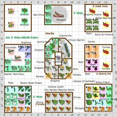 kitchen garden Plan