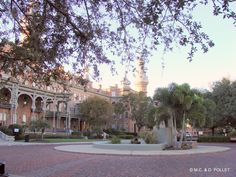 2008, Tampa Bay Hotel